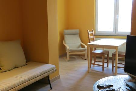 Appartement Belle-Ile - Liège - アパート