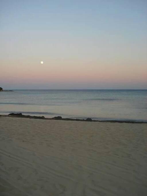 lido camomilla. local beach