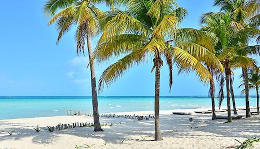 Explore Isla Mujeres