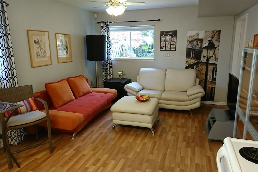 Living room with pull out sofa bed for 2