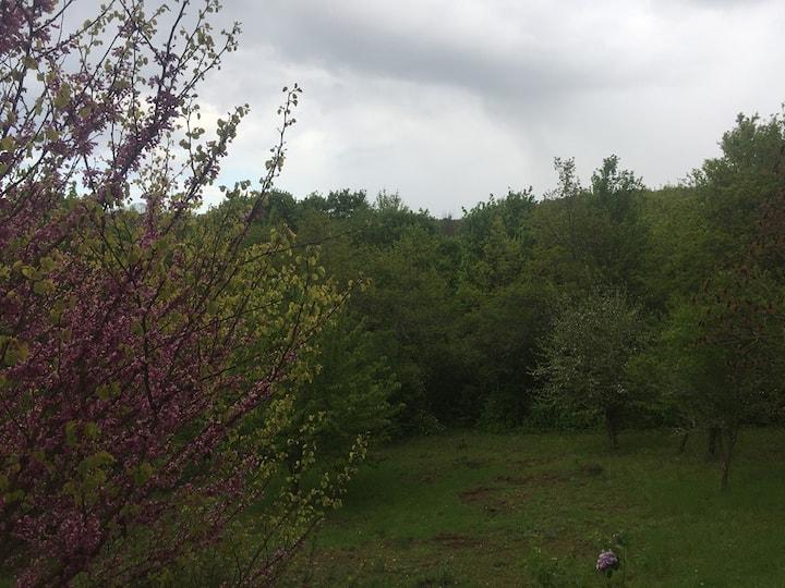 Chambre+sdb privée dans maison en bordure de forêt