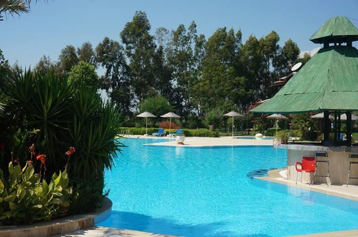 сад 5 гектаров и огромный бассейн - Side - Řadový dům