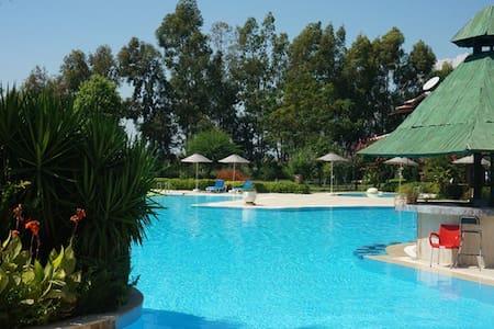сад 5 гектаров и огромный бассейн - Side