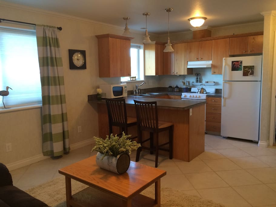 Fully equipped kitchen with stove, fridge, dishwasher and microwave.