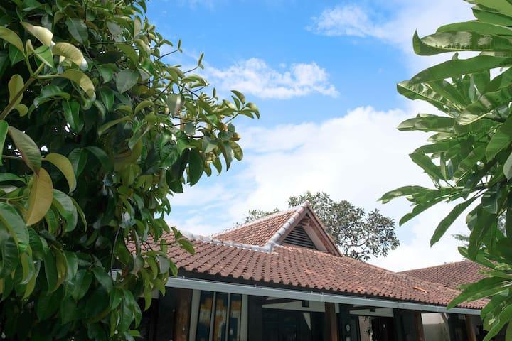 Villa Dende - Garden View Room #4