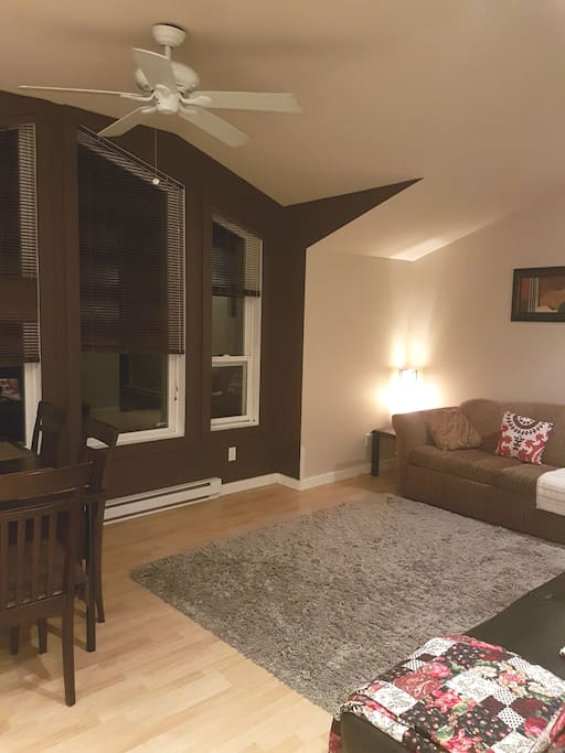 Open space kitchen and living room with double size futon and queen size sofa bed.