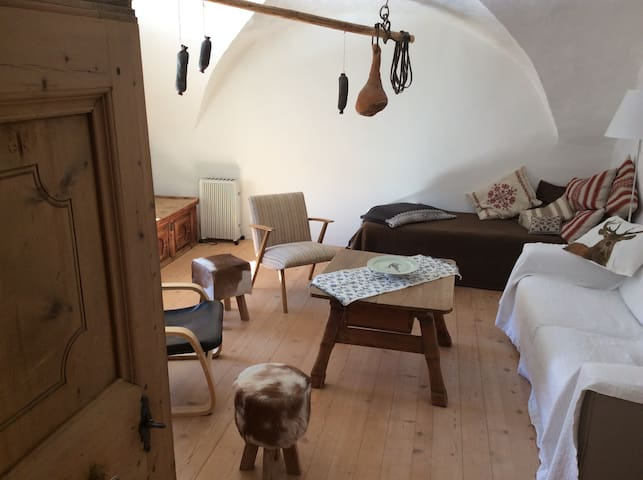 House Chasa 49 - Engadine history with convenience - Scuol - Talo