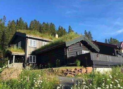 Stort hus med nydelig utsikt i Holmenkollen