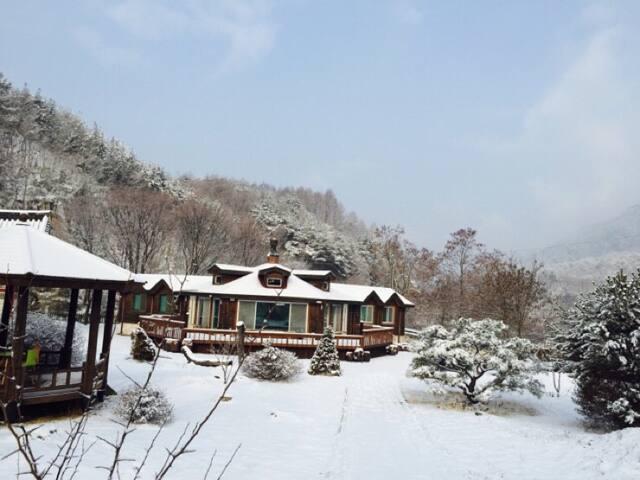 아리산방 - Danyang-gun