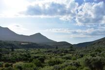 Θέα από το χωριό προς το βουνό Ιθώμη/ View from the village at the mountain Ithomi