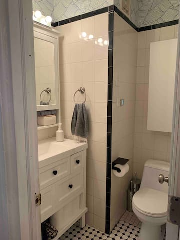 There is one bathroom in the apartment. It is shared.