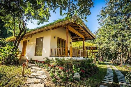 Ba Hồ Eco Resort Ninh Hòa /Explore nature/Check in