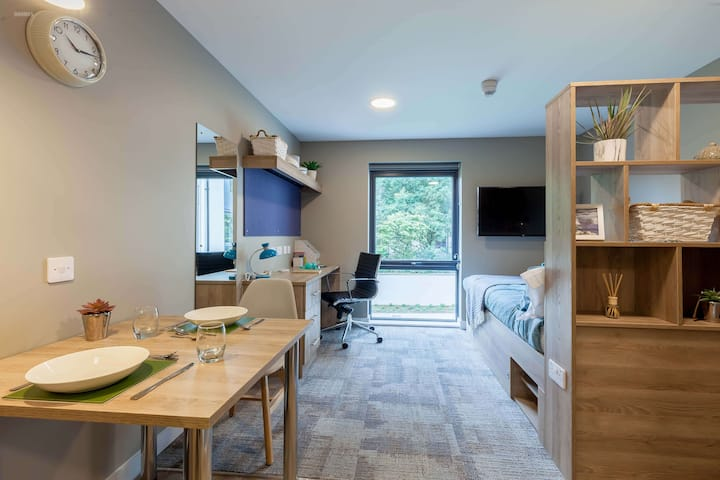 Student Only Property: Smart Silver Studio