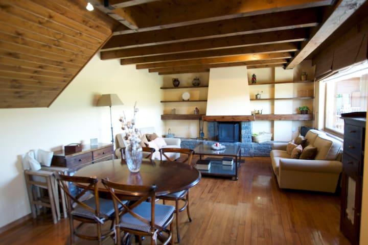 Apartamento Moixero, Rental Type