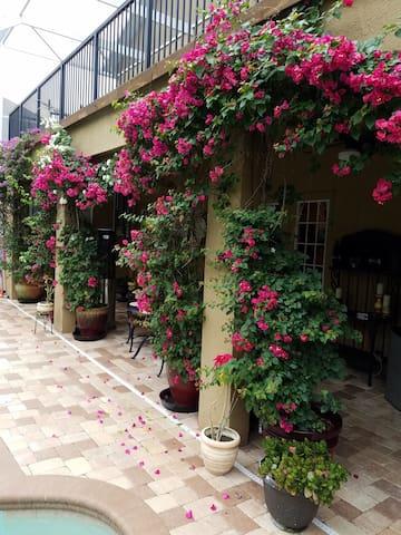 Luxury Suite, King Bed, Near Saddlebrook Resort!