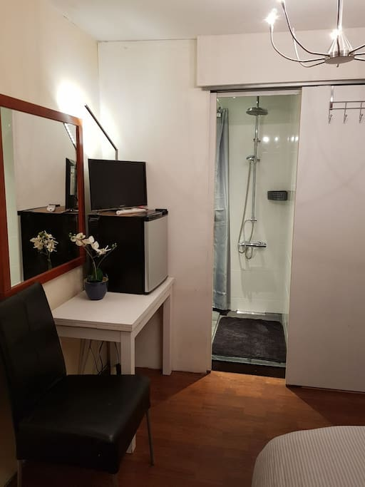 Table, minifridge and tv with netflix, access to the bathroom with sliding door.