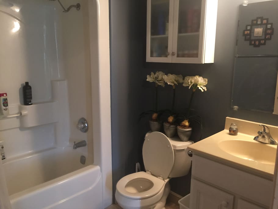 Full Bathroom extends from room for private use