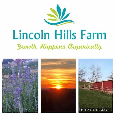 "Farm Stay At Lincoln Hills Farm ""Einstein"""