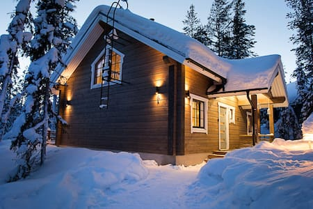 TievaMoon- a brand new villa in Ylläsjärvi