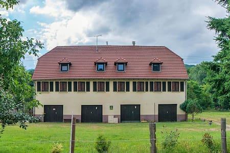 Saphir de La Forge - Wintzenheim - 公寓