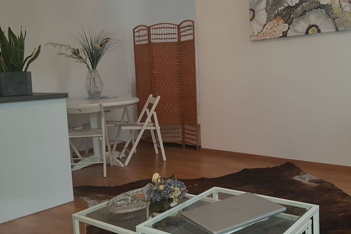 Modern and cosy Appartement near the City Center