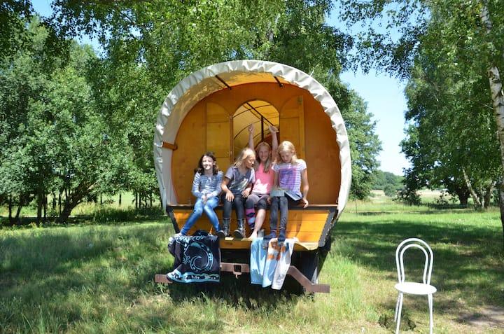 Planwagencamping und Ferienbauernhof