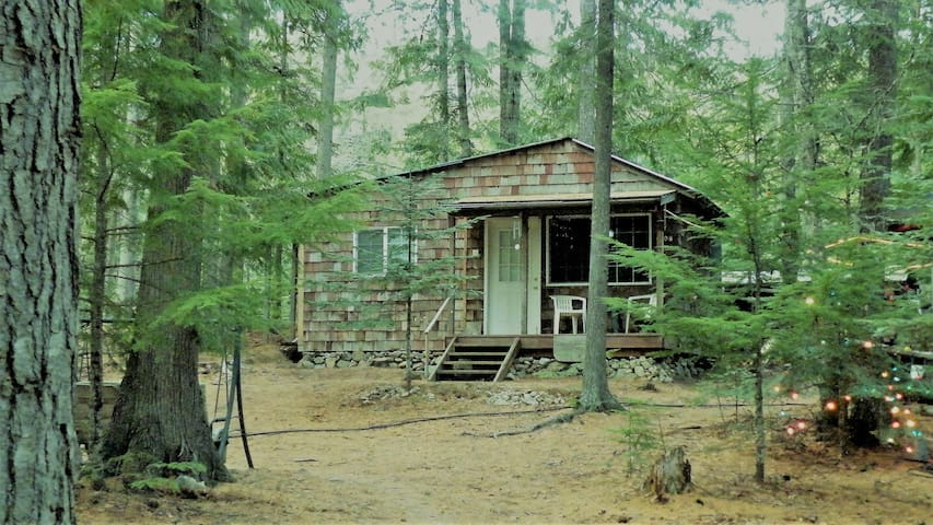 """Little Cabin in the Woods """"The 1208"""""""