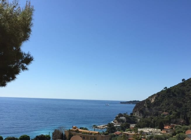 Eze S/Mer spacious sunny apt with exceptional view