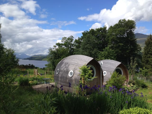 Loch Tay hidden garden with views