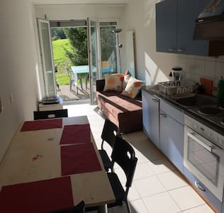 Lovely apartment in Fribourg - 马尔利 (Marly) - 公寓