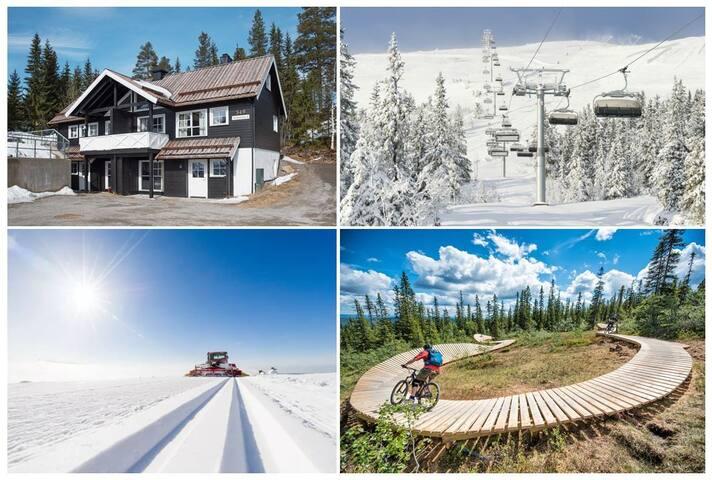TRYSILFJELLET SØR: Bike/Walk/Ski inn - ut