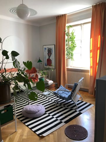 Artistic and cosy apartment in SOFO