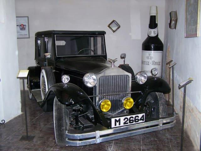 Cortijo andaluz entre viñas& olivos