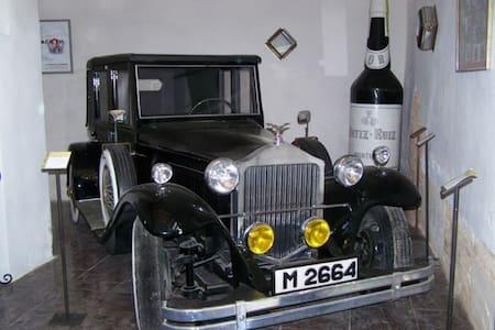 Cortijo andaluz entre viñas& olivos - Montilla