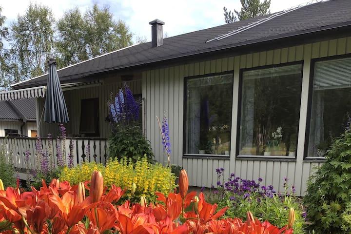 Bestemors hus ved Bardufossen