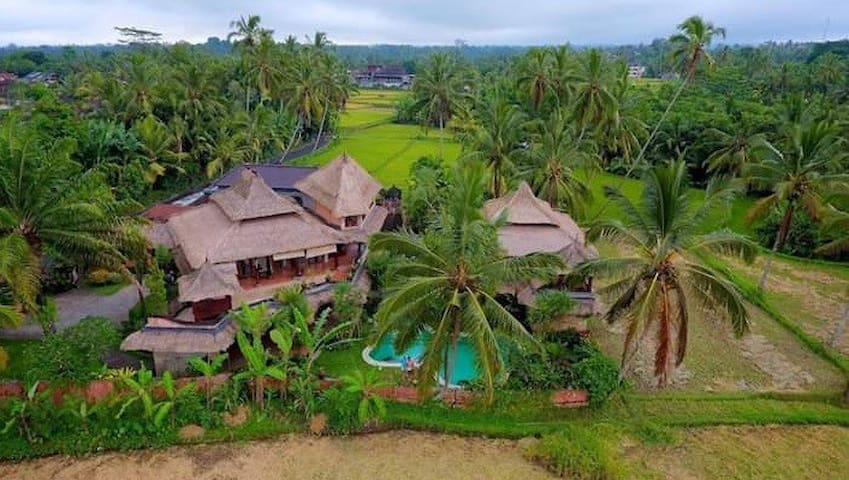 Amazing untouched nature villa with swimming pool2