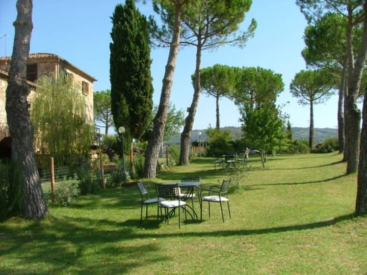Pini 1803 - Vacation Rental in Farm with swimming pool near Siena, Tuscany