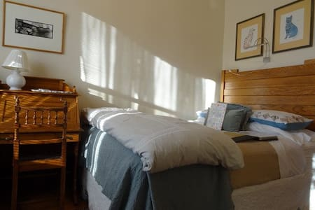 Sunny Queen bedroom & Private Bath - Chicago