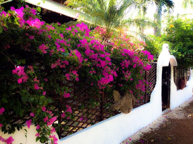 2BR Playa Avellanas Tree House (AC, TVs, WiFi)