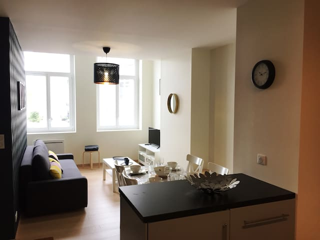 Appartement centre ville 45m2