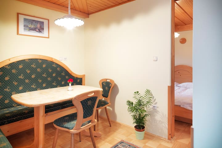 Green Apt. with garden by the river - Bohinjsko Jezero - Huoneisto
