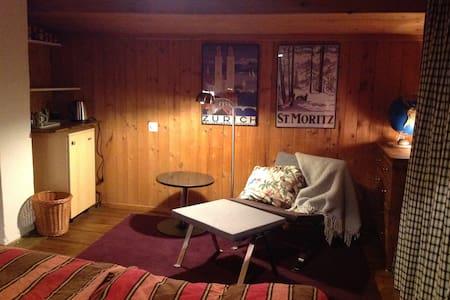 cosy attic room plus open space - Schmitten - 獨棟