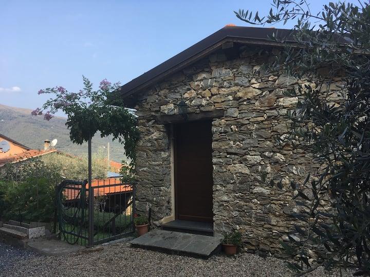 Villa dell'Ulivo con giardino