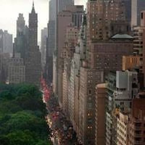 Aerial view Central Park