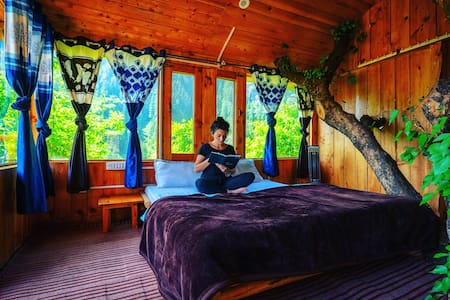 Whispering Pines Cottages|Treehouse|Free BF&🔥