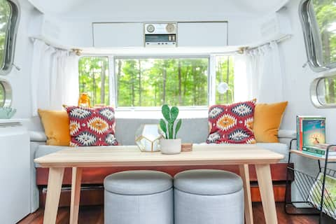 Retro camping vibes. Airstream in a private forest