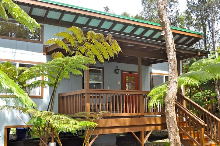 Volcano Loft House