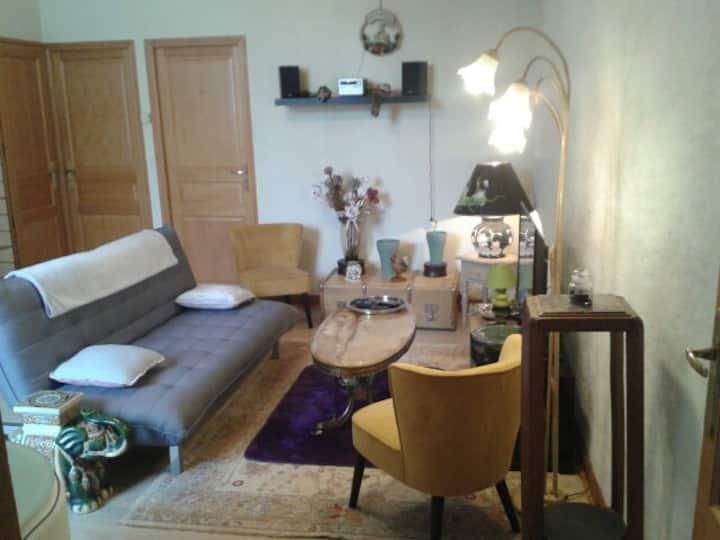 appartement meublé 54m2 calme en centre historique