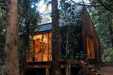 Espectacular Cabaña Moderna de Diseño en Bosque