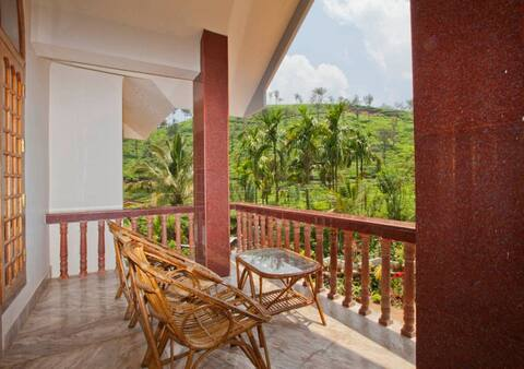 enjoy the tea gardens and coffee plantations
